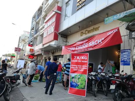 """DAMODE cùng người dân Sài Gòn ra sức """"cứu chuối"""" Tây Ninh"""