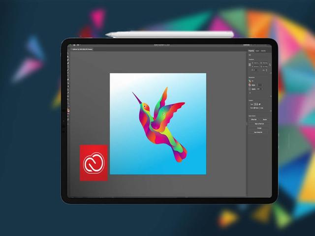 iPad sẽ được hỗ trợ Illustrator, dân thiết kế đổ xô đi mua